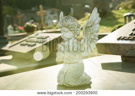 Little Angel On Grave