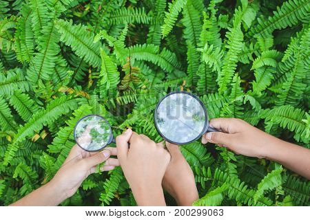 Close up hands holding magnifying glass in garden color of hipster tone selective soft focus concept natural explorer