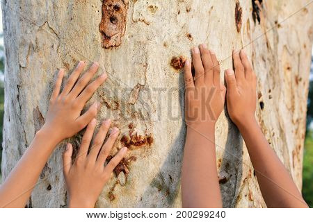 Children and big tree color of hipster tone selective soft focus concept nature and people