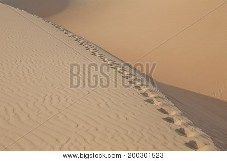 footsteps in a desert of Rub Al Khali