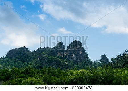 Tree covered hills on the riverside of the Kilim park in Langkawi. This is a popular tourist spot shot on a cloudy afternoon.