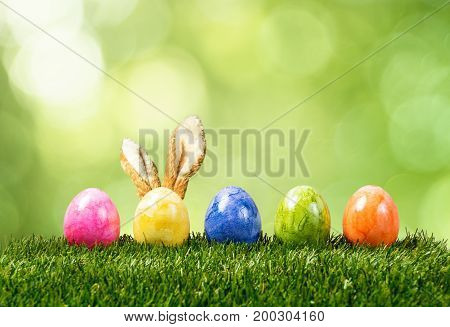 A row of five colorful easter eggs on green grass with bunny ears in Springtime.