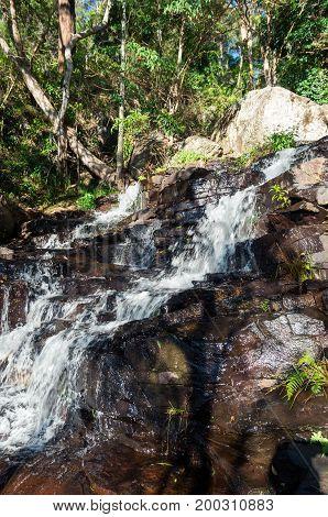 Cameron Falls waterfall on Mt Tamborine, in the Gold Coast hinterland in Australia.
