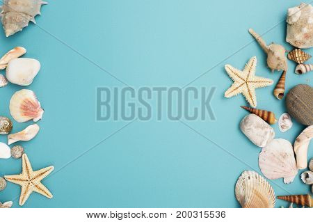 Frame Of Shells Of Various Kinds On A Blue Background