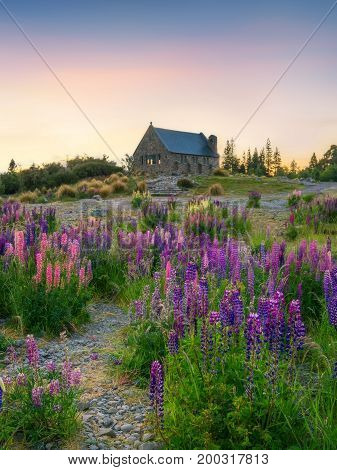 Church Of The Good Shepherd, Tekapo, New Zealand