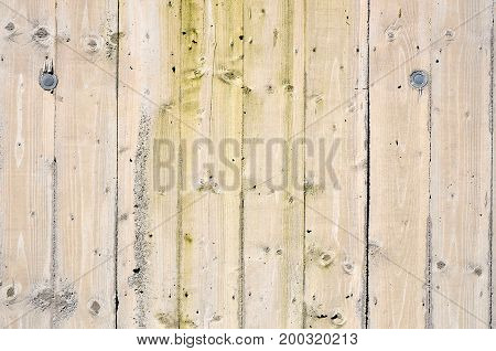 Wood background close up photo in different brown