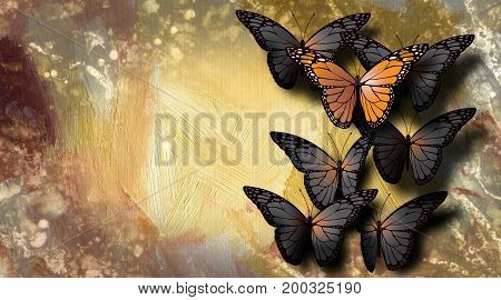 Graphic illustration of beautiful fully developed Monarch Butterfly among undeveloped gray black ones. Simple illustration of of being unique.