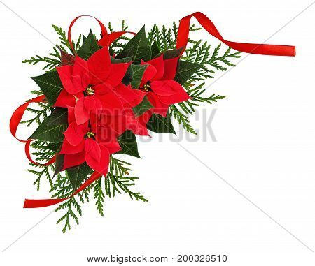 Christmas red poinsettia flowers corner arrangement with ribbon bow isolated on white background