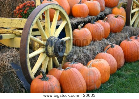 Old Wagon With Pumpkins