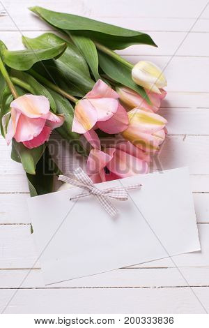 Fresh spring pink tulips and empty tag on white painted wooden background. Selective focus. Place for text. Vertical image.