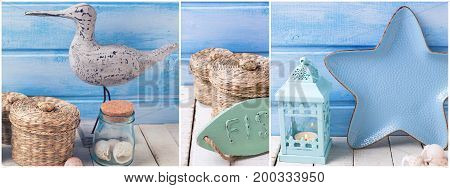 Coastal living theme site header. Collage from photos with ocean sea or coastal living decorations. Decorative wooden bird plate in form of star bottle with ocean treasures on light backgound against blue wall.