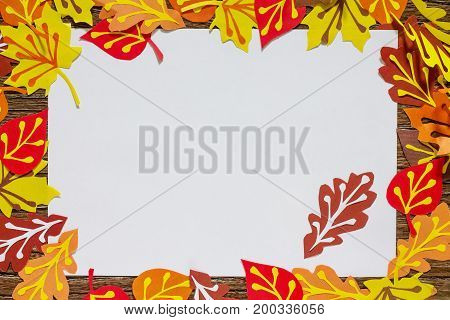 Autumn Frame. Colorful Leaves Of Trees. Children's Art Project, Craft For Children. Craft For Kids.