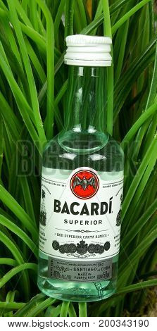 RIVER FALLS,WISCONSIN-AUGUST 19,2017: A bottle of Bacardi brand rum with a greenery background.