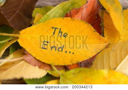 Pile of fallen colorful autumn leaves with inscription THE END