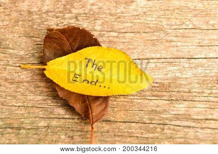 Brown and yellow fallen autumn leaves with inscription THE END on the old wooden background