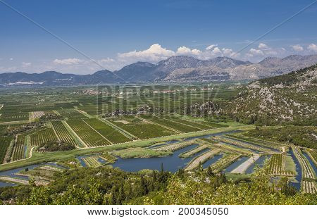 Agricultural Orchards And Fields In The River Delta Neretva Croatia