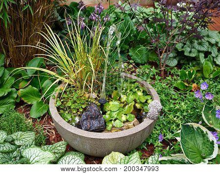 Small water decorative fountain in a beautiful creative blooming green garden