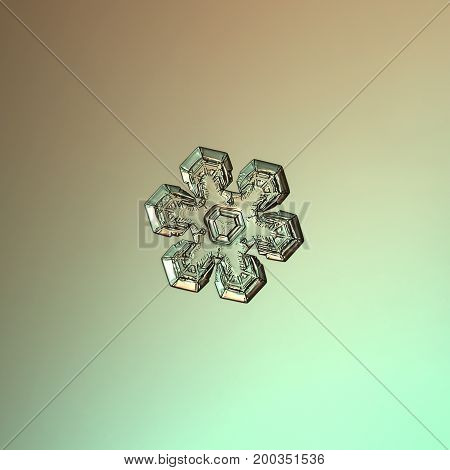 Real snowflake macro photo: star plate snow crystal with simple shape, six short, broad arms, glossy relief surface and complex inner pattern. Snowflake glittering on pale gradient background.
