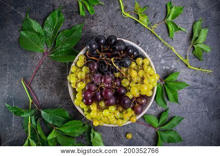 Top View Bowl Of Various Grapes: Red, White And Black Berries And Green Leaves With Water Drops On T