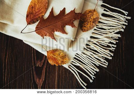 Autumn composition with white woolen scarf and yellow leaves.wooden background.top view