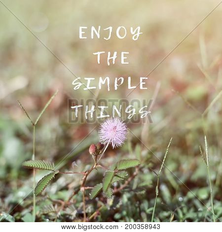 Inspirational And Motivational Quotes - Enjoy The Simple Things. Retro Style Background.