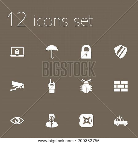 Collection Of Surveillance, Walkie-Talkie, Security Man And Other Elements.  Set Of 12 Security Icons Set.