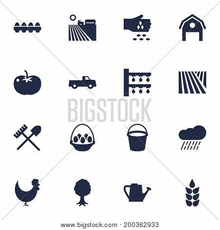 Collection Of Cloud, Container, Rooster And Other Elements.  Set Of 16 Agricultural Icons Set.