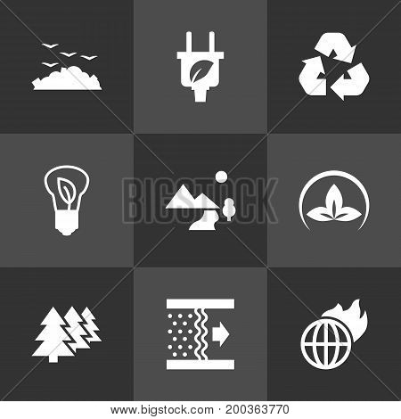 Collection Of Friendly, Rubbish, Leaf And Other Elements.  Set Of 9 Bio Icons Set.