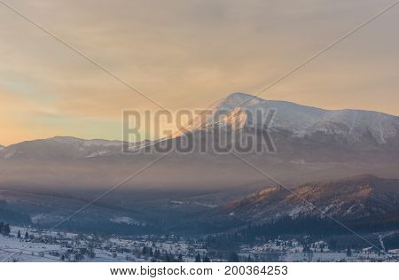 Pine Tree In Winter At Sunset In The Mountains.