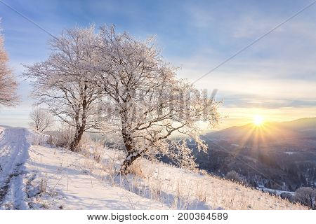 Beautiful Winter Landscape In The Mountains.