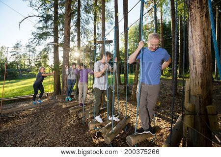Fit Business People Crossing Swinging Logs In Forest