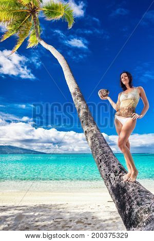 Young beautiful girl in bikini with coconut on the palm tree on a tropical beach