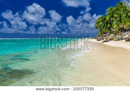 Palm trees on the vibrant beach, tropical Cook Islands, Rarotonga