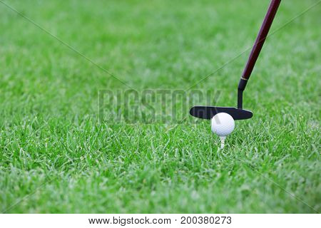 Playing golf on course in summer day, closeup