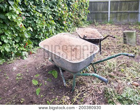 Two Wheelbarrows In The Garden Full Of Dirt