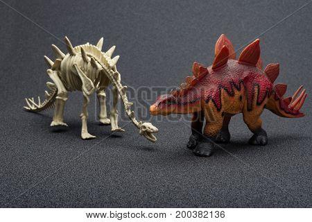 stegosaurus toy and stegosaurus skeleton on a dark background