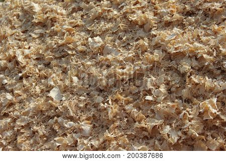 Close up of a pile of sawdust from a sawmill