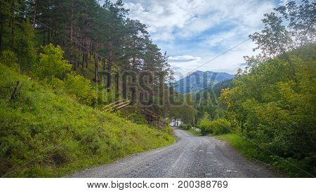 Mountain Landscape And Highway