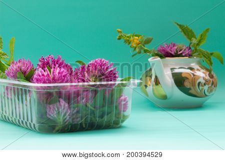 Teapot  With Clover, Garden Mint, St. John's Wort, Box With Fresh Red Clover On Green Bacground.