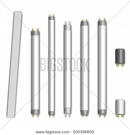 Set of different fluorescent lamps and starters isolated on white background. Elements of design of electrical components vector illustration.