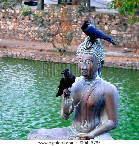 Buddha statues in Seema Malaka temple in Colombo Sri Lanka