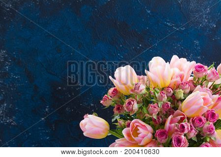fresh pink and yellow tulips and roses close up on blue background with copy space