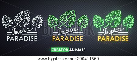 Tropical Paradise neon sign. Creator animate. Isolated logo.