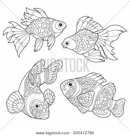 Coloring page of goldfish and clown fish. Freehand sketch drawing for adult antistress coloring book in zentangle style.