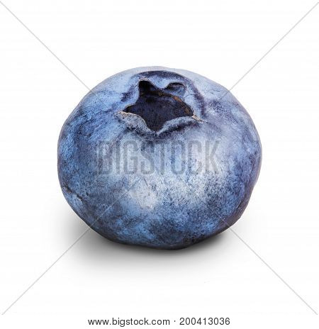 ripe blueberry isolated on white background with clipping path