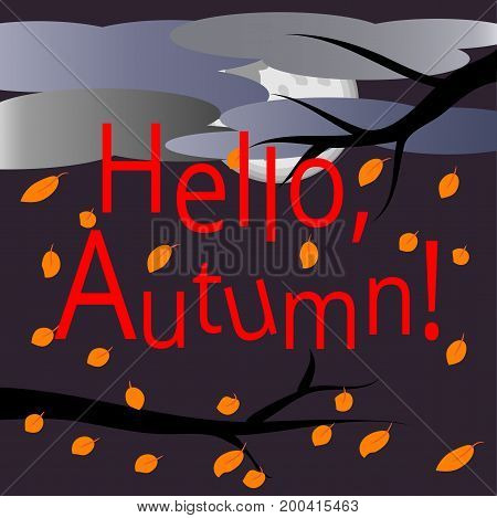Hello, autumn. text surrounded by multi-colored of maple leaves. Autumn landscape: branches of a tree with flying leaves, sky covered with clouds. Postcard, background.