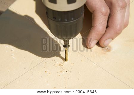 carpenter screws the gold screw with a screwdriver.