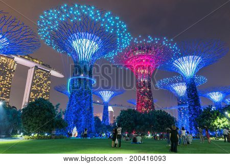 SINGAPORE - October 24 2016: Colorful blooming of lights show at Garden by The Bay.