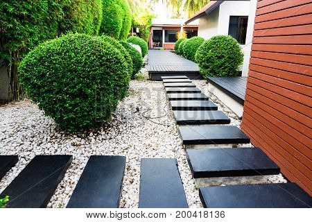 Garden Path On White Pebbles And Lush Green Trees.