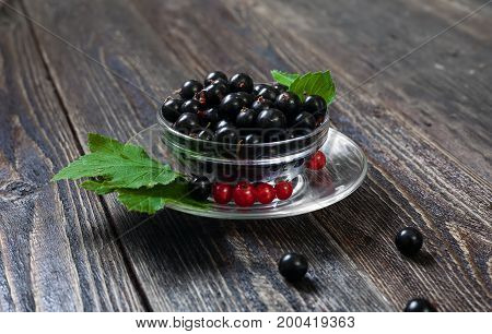 A glass cup with ripe forest berries. Large black currant berries. Harvest of berries on the farm.